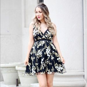 Express embroidered & tulle dress